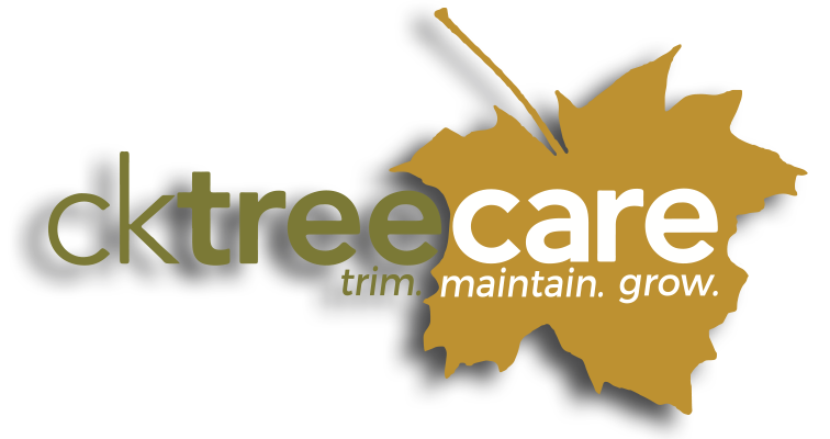 CK Tree Care Logo